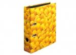 10 x Ordner Zitrone DIN A4, 8cm bei ZHS kaufen