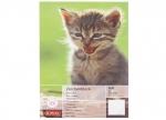 10 x Zeichenblock A4 Tiere, sort. bei ZHS kaufen