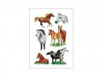 10 x Etiketten Pferd bei ZHS kaufen