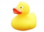 Quietscheente Lilalu Ente gelb bei ZHS kaufen