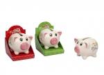 Stück vom Glück Sparschwein 12er bei ZHS kaufen